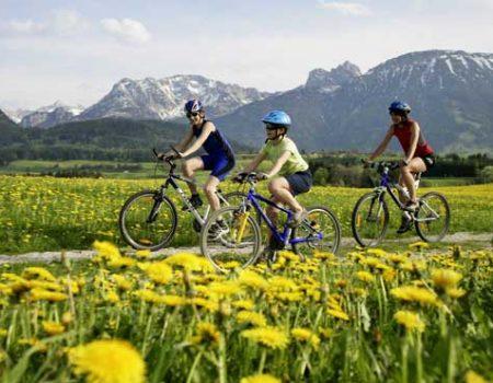 Sommer Radfahrer Löwenzahn